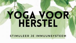 stimuleer je immuunsysteem yoga voor herstel eva noorda