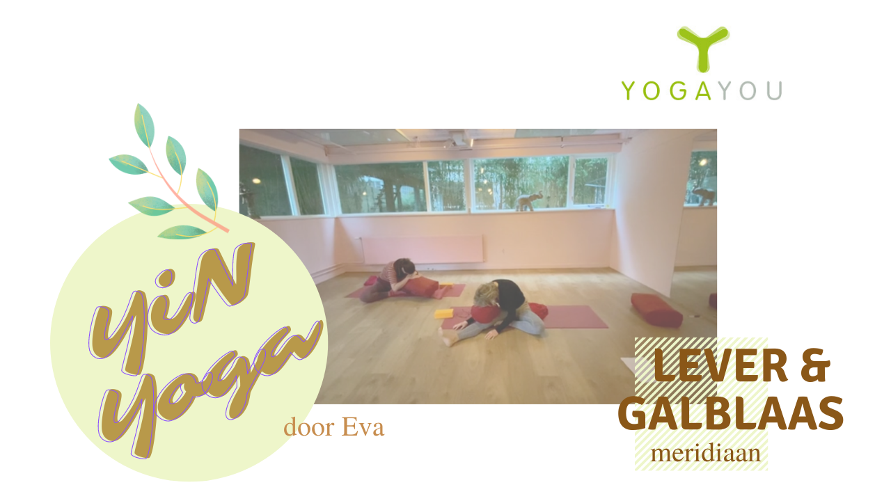 yin yoga voor lever en galblaas meridiaan