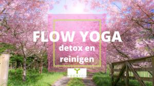 flow yoga detox en reinigen